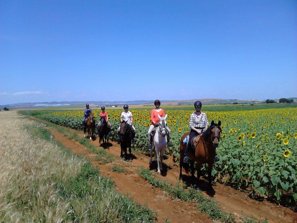 ausreiten in Andalusien