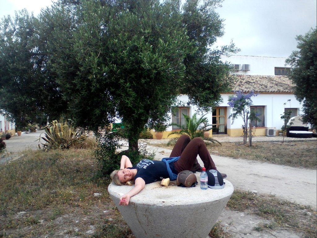 Reiten und Yoga Eva Habermann