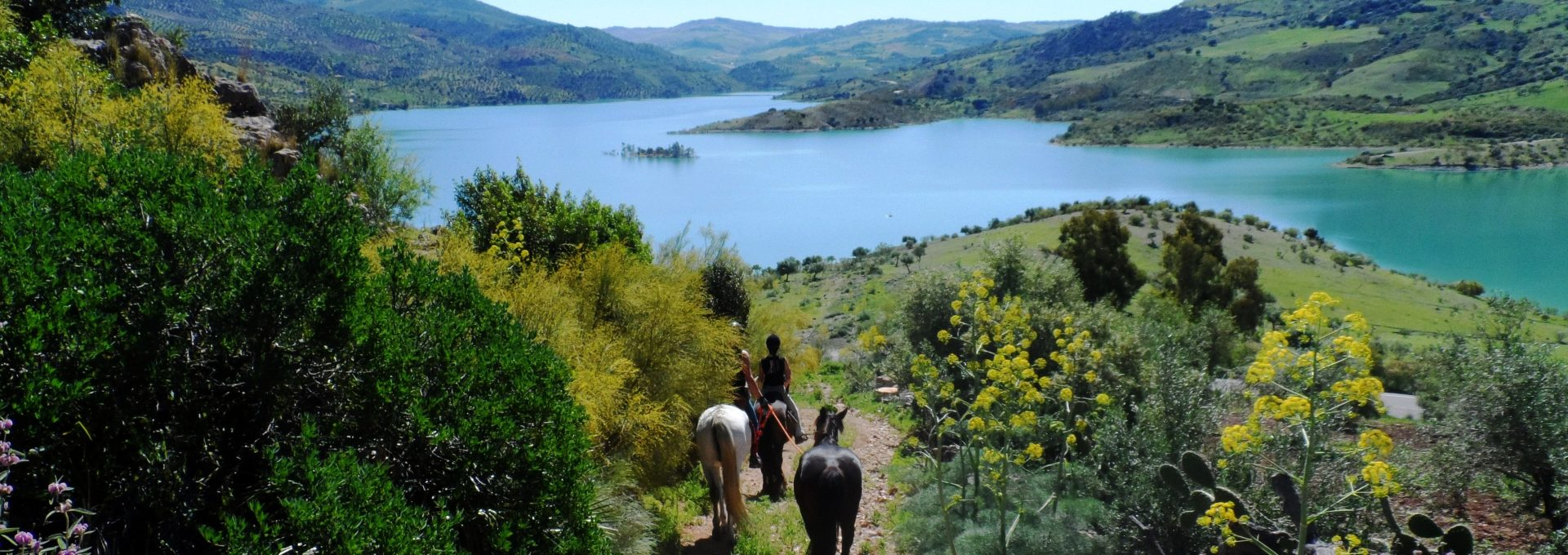 Reiten in Andalusien
