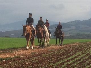 reiturlaub andalusien fortgechrittene reiter