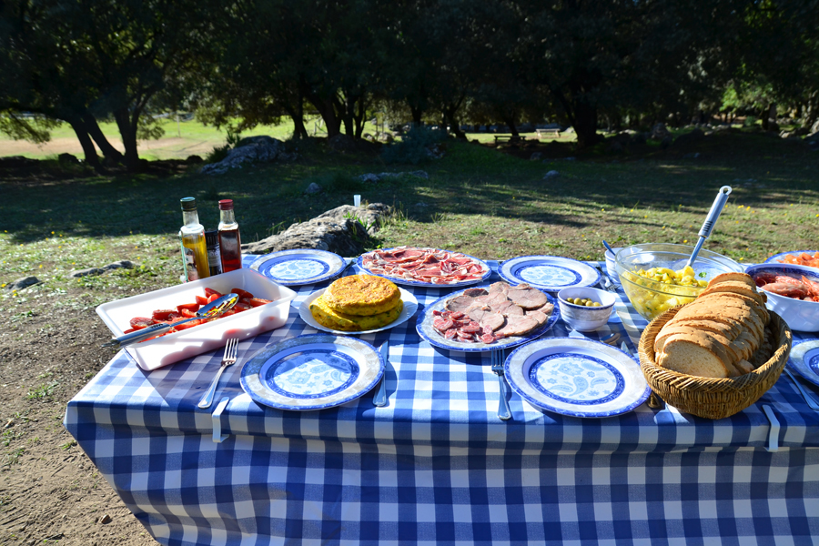 touren_julia_picknick