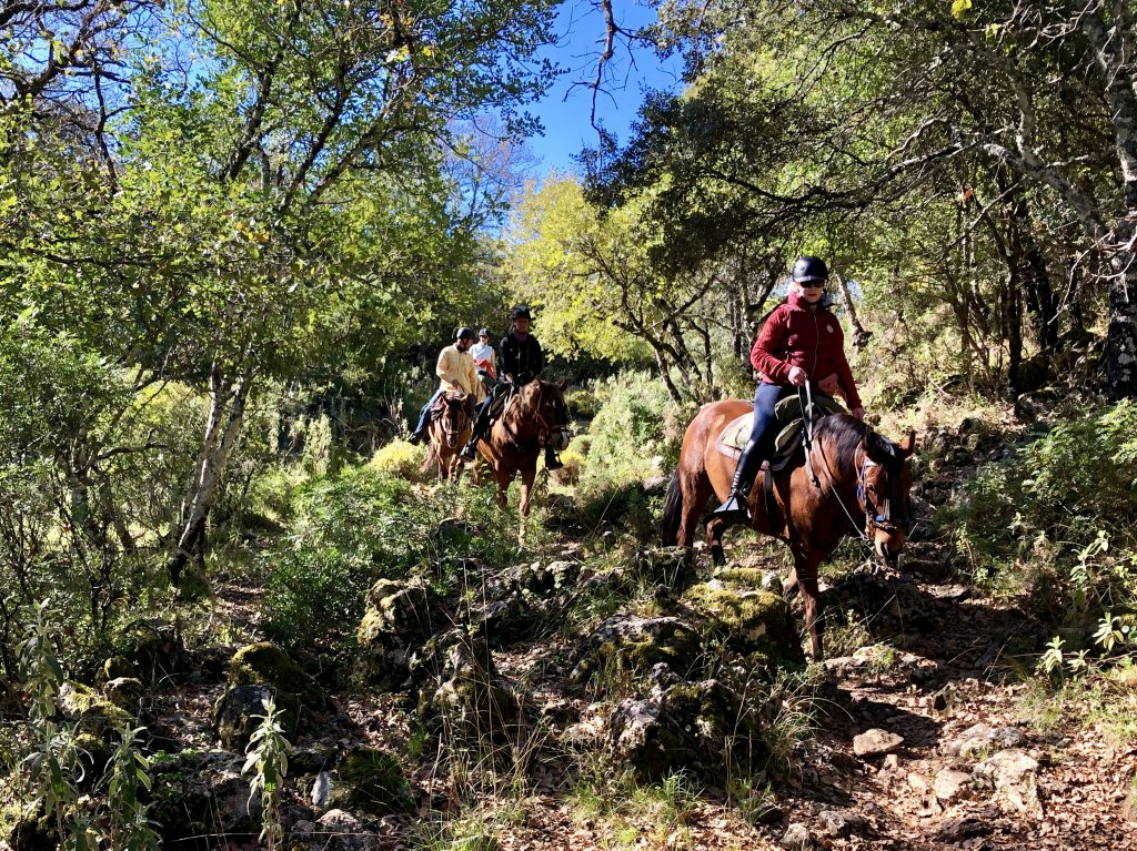 trailritte equiventura andalusien