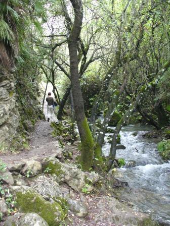 am rio el bosque 2